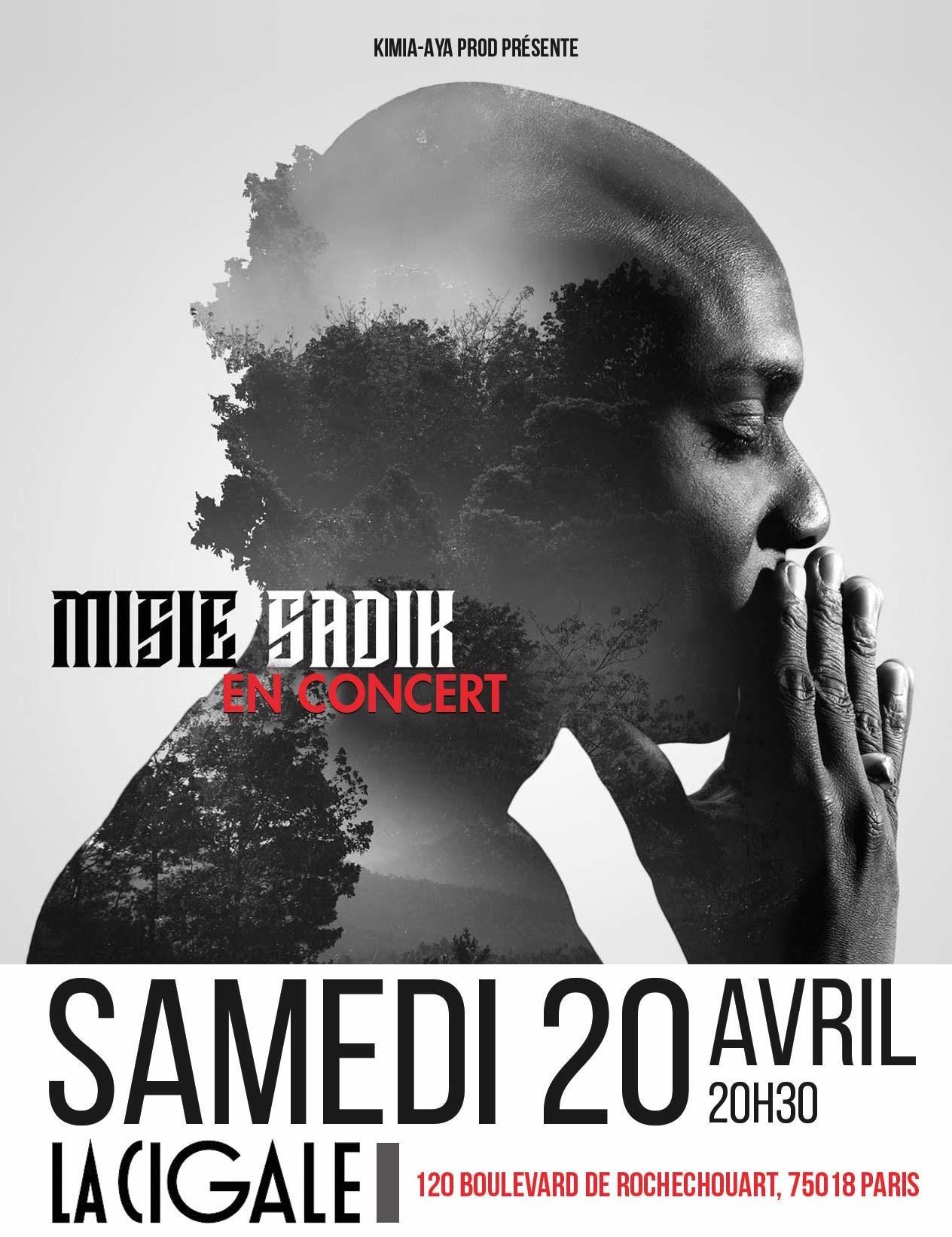Misié Sadik en concert - La Cigale / Paris (75)